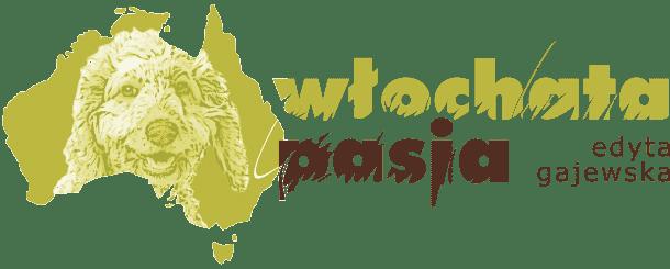 Australijskie Labradoodle - Hodowla Australijskie Labradoodle