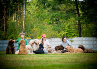 Australian Labradoodle and owners