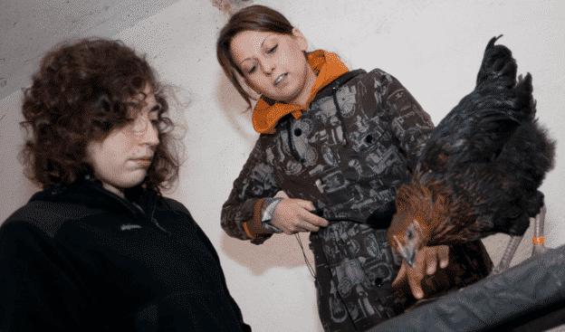 edyta gajewska i kury